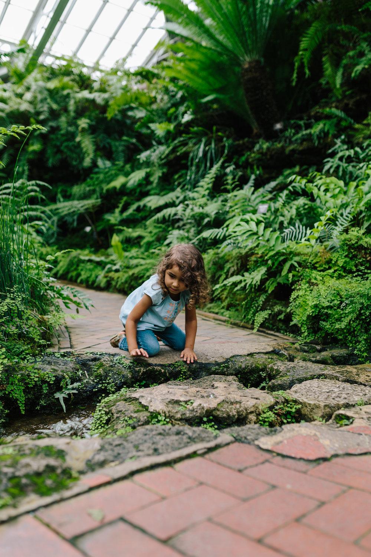 Conservatory 33.jpg