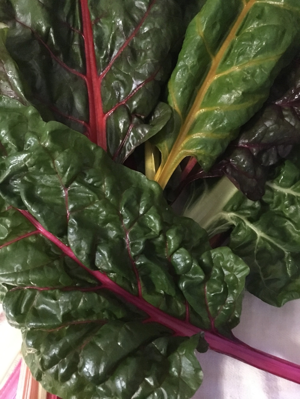 Skies have been stormy but our breakfast plates are bright with organic rainbow chard. Thank you, Portland Farmers Market and Maine farmers!