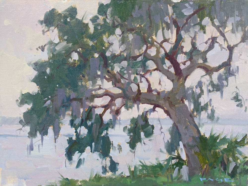 "Southern Live Oak  Cumberland Island, GA  Available through the artist's studio  12x16"" oil on panel $1500"