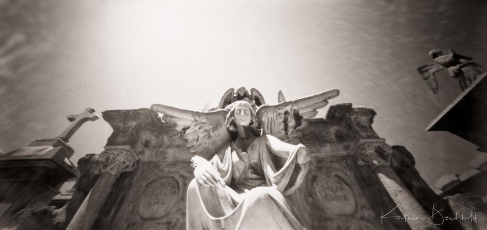 Cementiri Poblenous in Barcelona - Pinholes