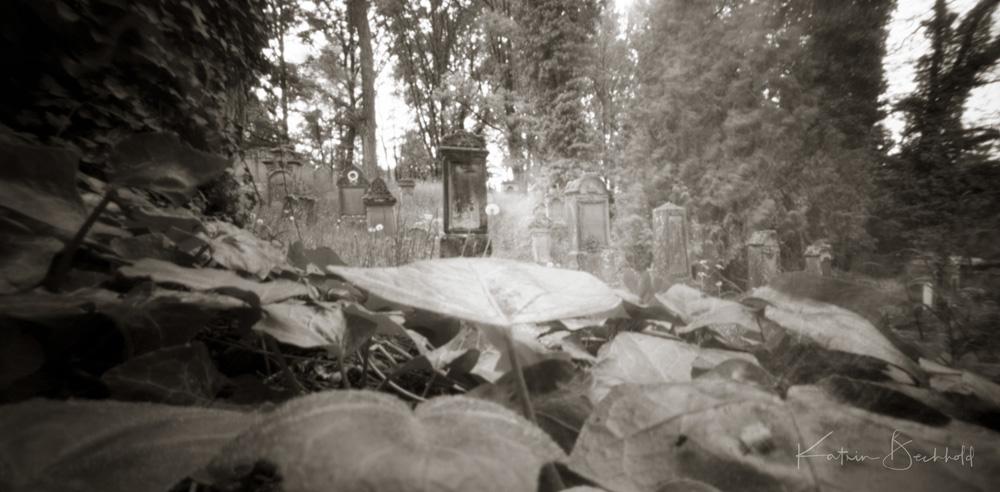 Jüdischer Friedhof in Walsdorf