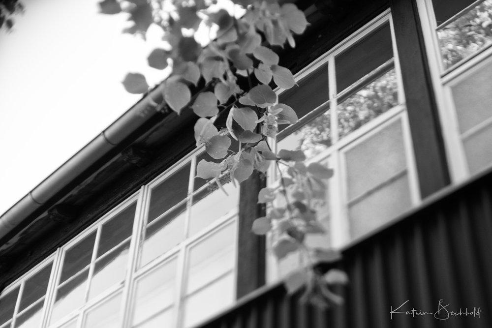 InstaErlangenshots-8187.jpg
