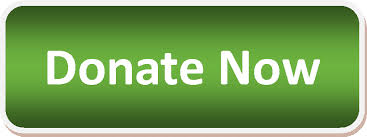 Button Donate Now.png