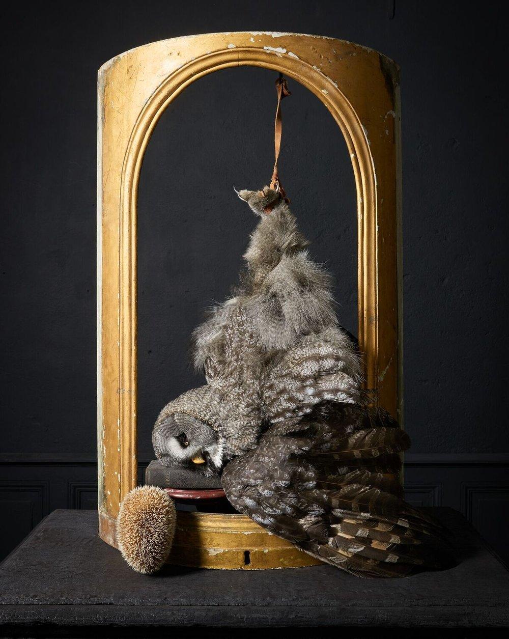 Darwin, Sinke & van Tongeren Art Sablon 02