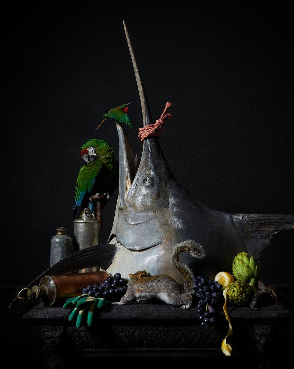 Darwin, Sinke & van Tongeren Art Sablon 03
