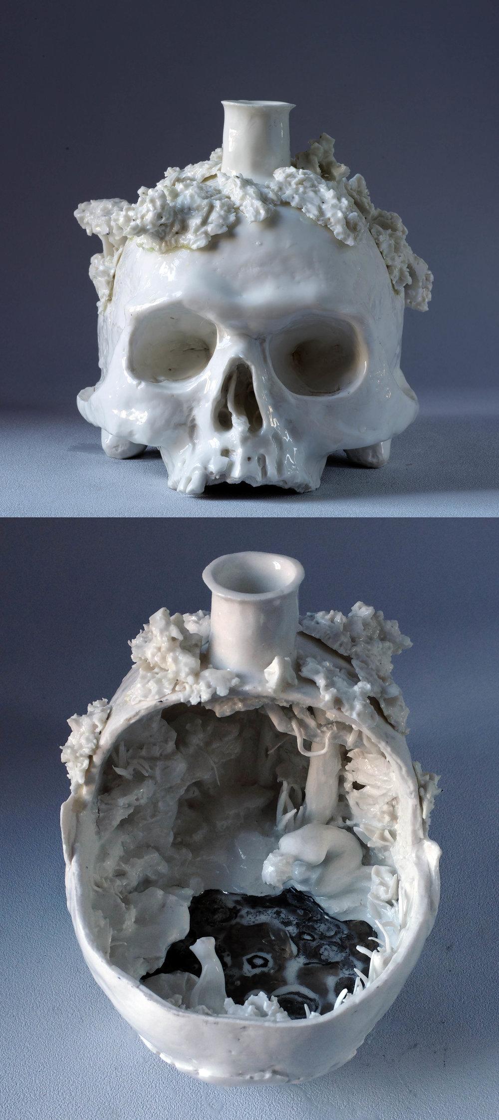 Narcisse, 19x18x13cm, Porcelaine.jpg