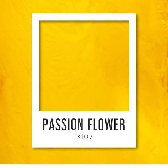 asian paints passion flower.jpg