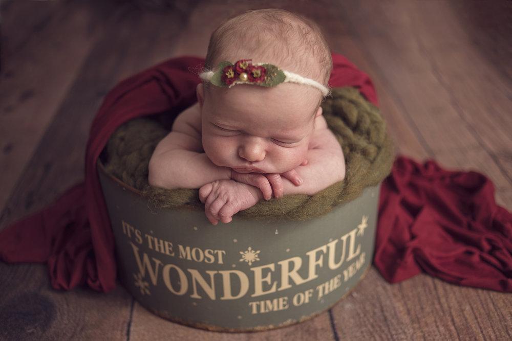 leonardtown maryland newborn photographer