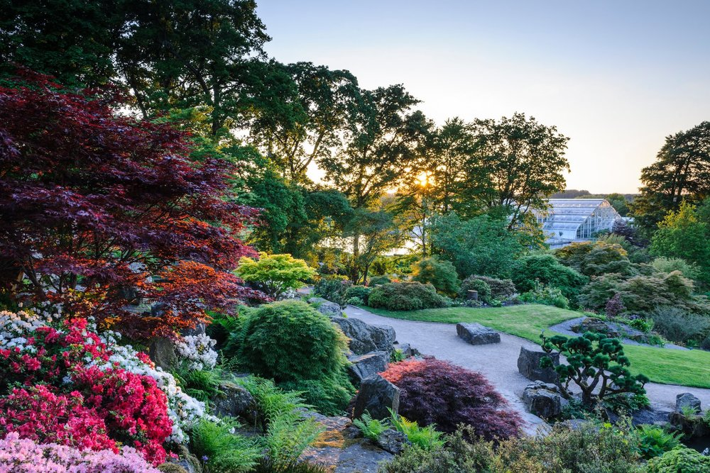 View from the Rock Garden towards the Glasshouse in Spring at RHS Garden Wisley. Image Credit: RHS / Jason Ingram ©RHS