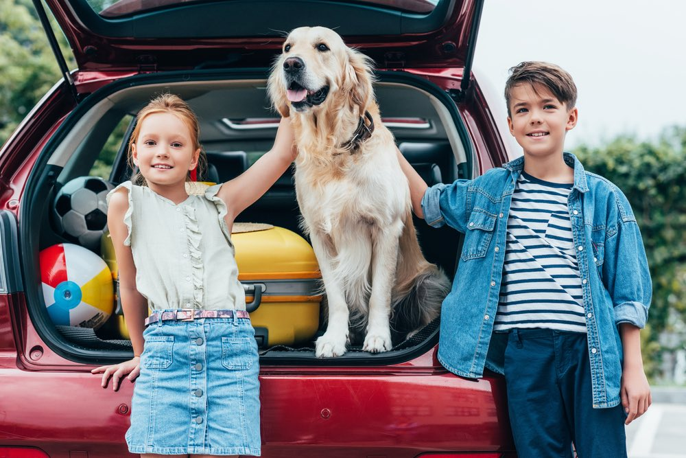 Is Man's Best Friend Welcome at your Dealership?.jpg