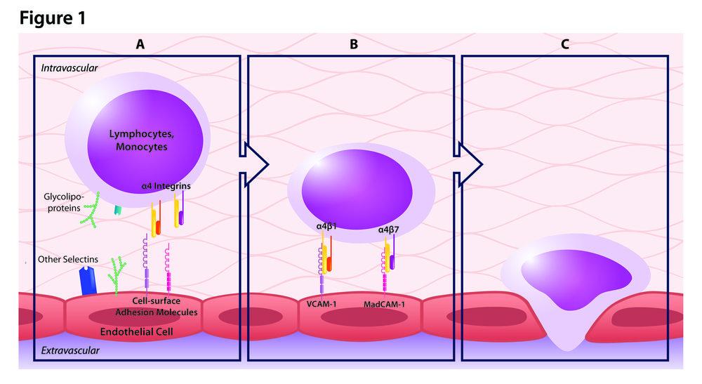 tysabri-figure1.jpg