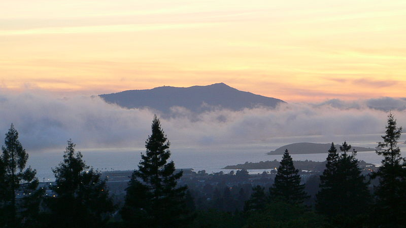 Mt. Tam run, sail on San Fran—yes ma'am!