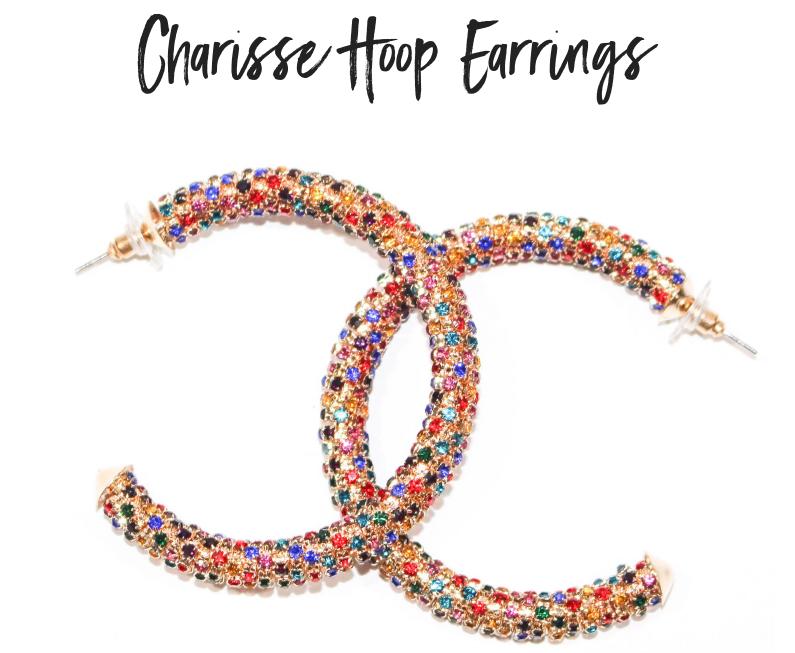 Charisse Hoops.png