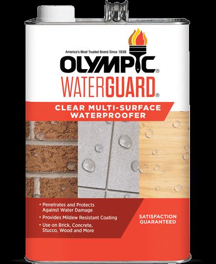 WaterGuard® Multi-Surface Waterproofing Sealant Clear