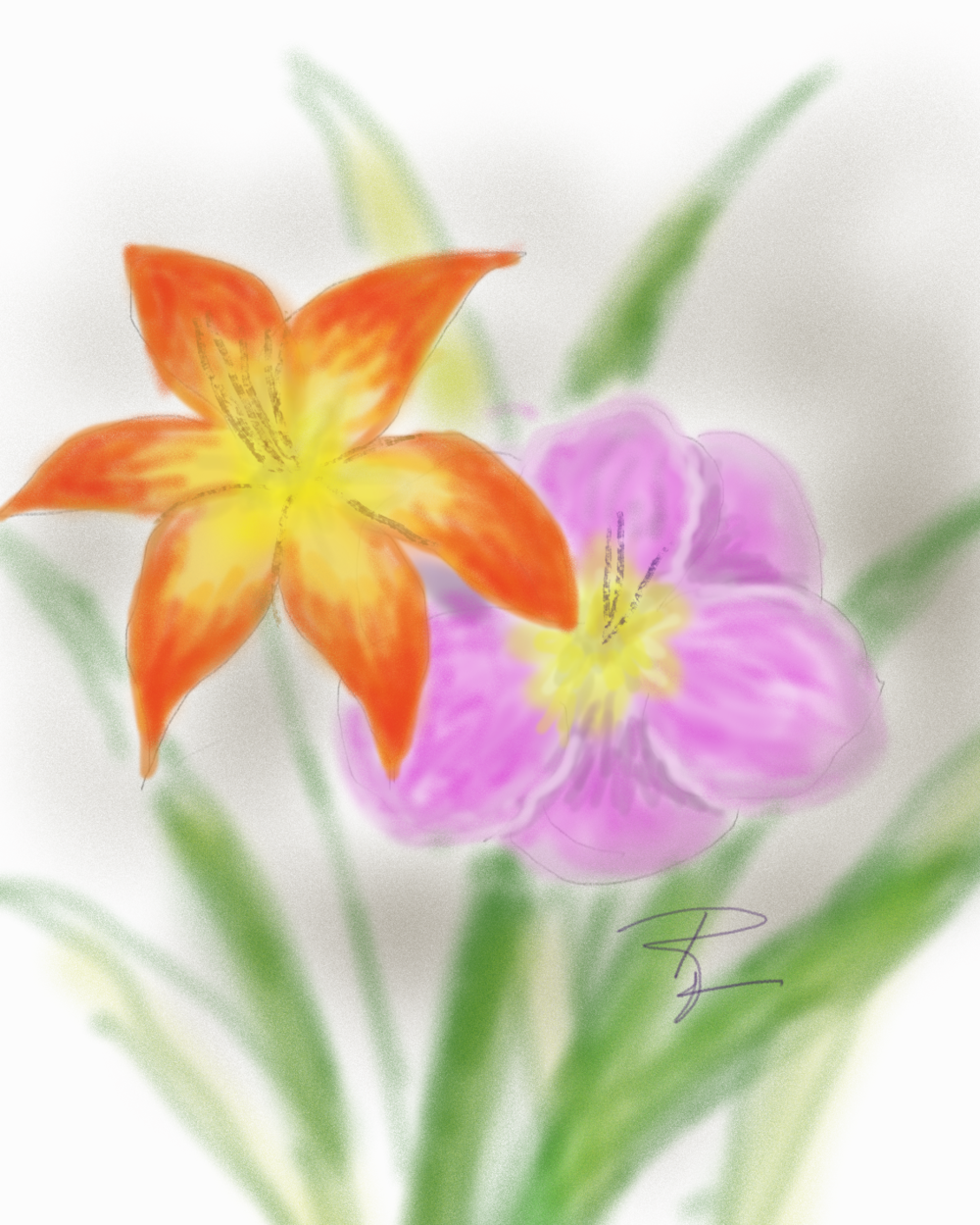 daylilies.png
