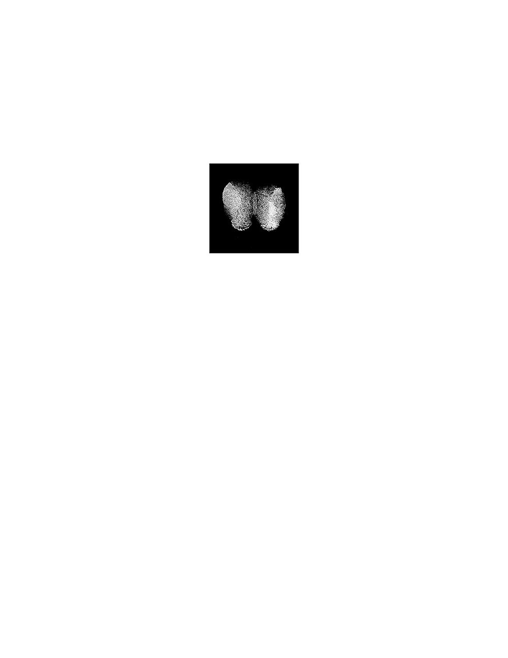 Symmetrical Identities