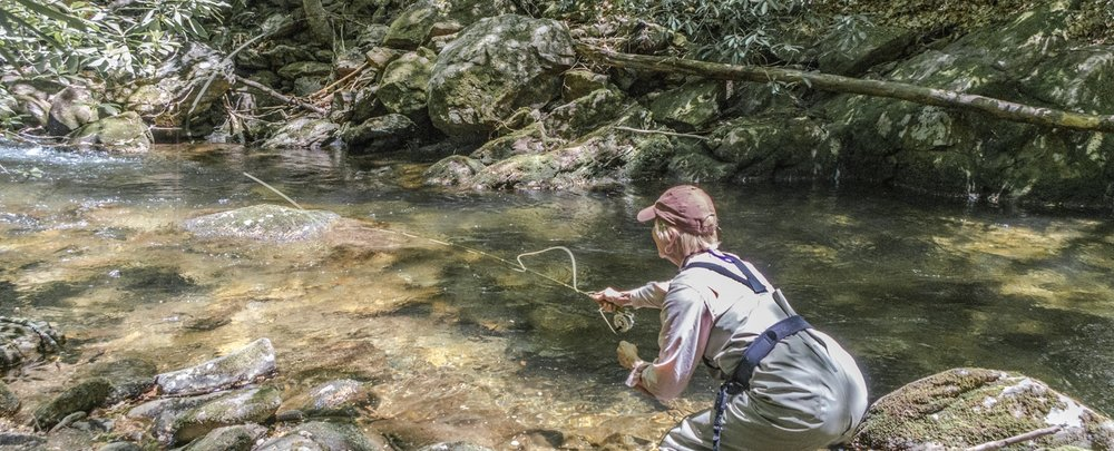 Small Stream Fly Fishing Asheville, Brevard, Pisgah, North Carolina