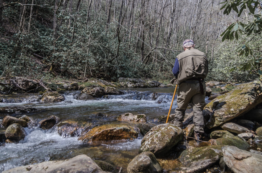Fly Fisherman on Small Stream