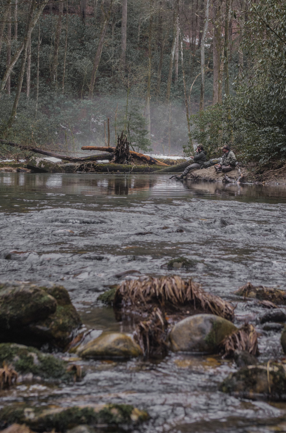 Winter Fly Fishing on the Davidson River
