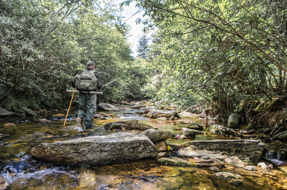 Headed up a Brook Trout Stream