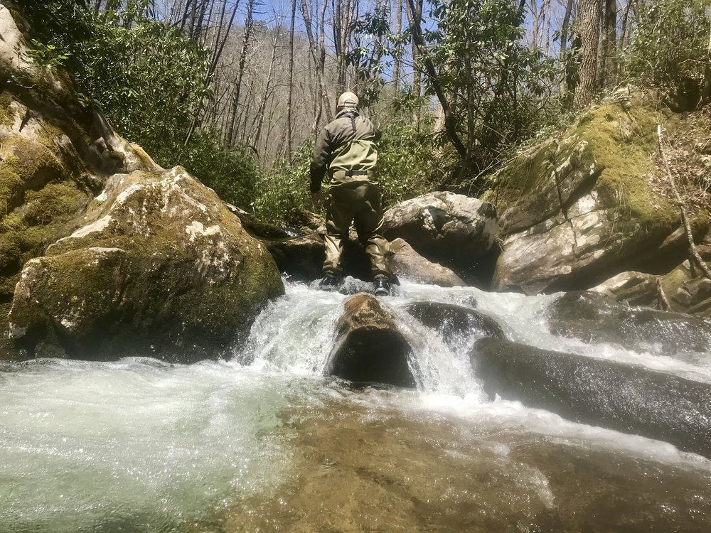 Small Stream Fly Fishing Pisgah National Forest .jpg