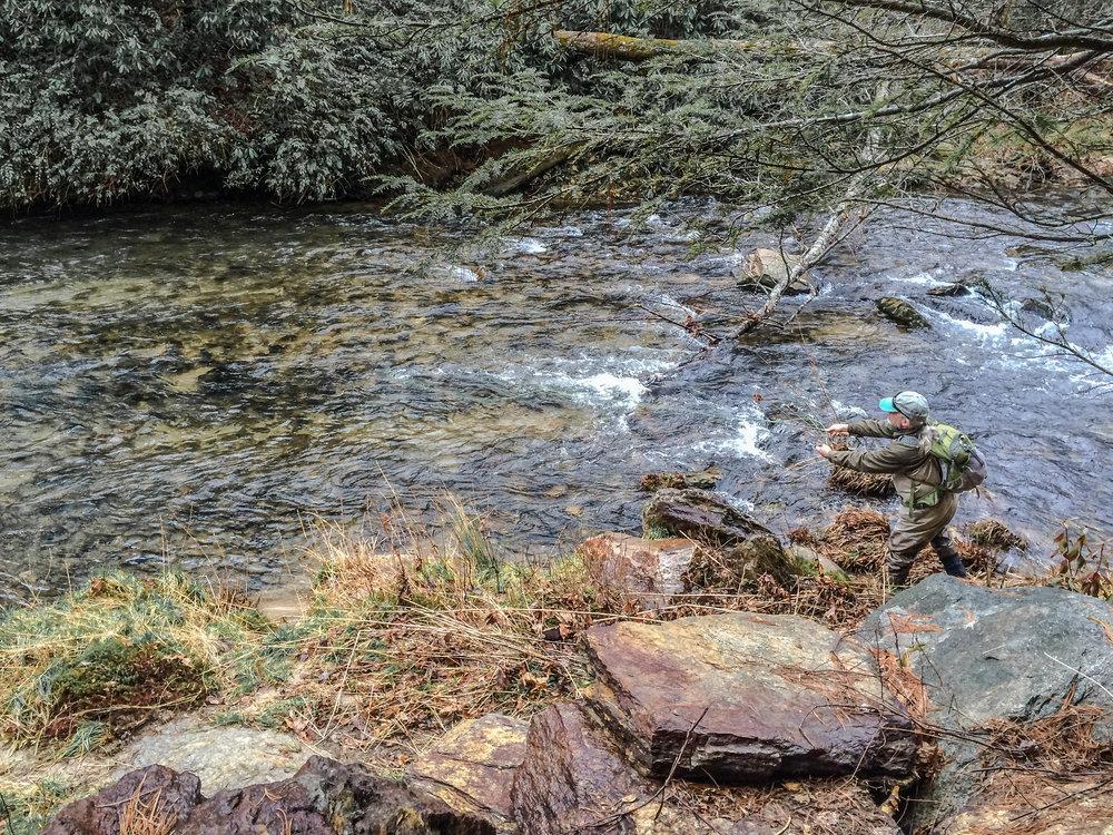 Davidson River Pano.jpg