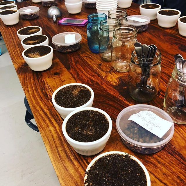 Cupping Colombian in Georgetown. See you at the Hand Made Sale at second use April 21st. where I will have a booth selling one of these delicious coffees.