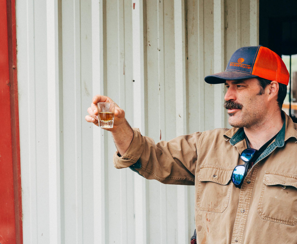 Duncan leads a toast to celebrate the first of many pigs to be slaughtered.