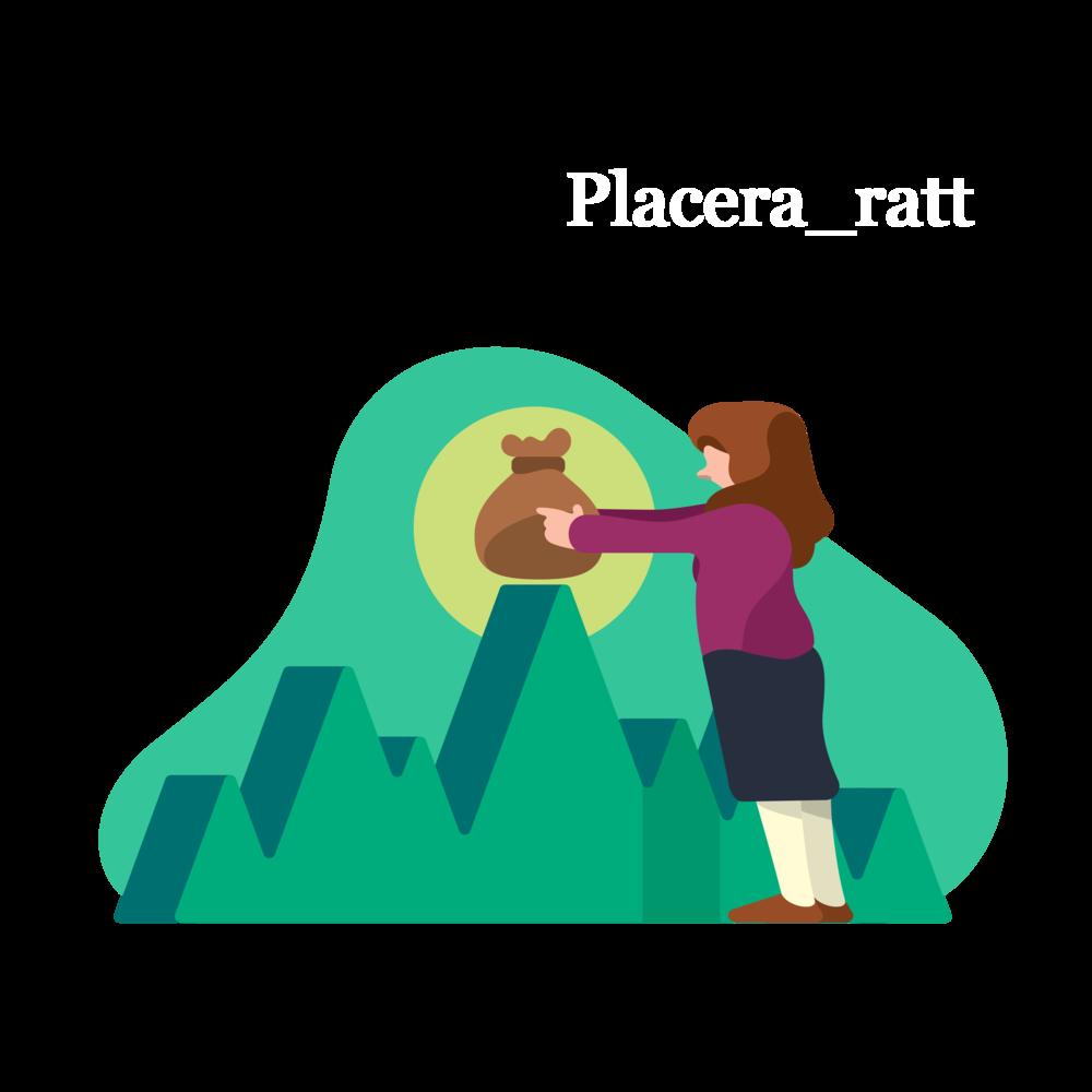 Placera_ratt.png