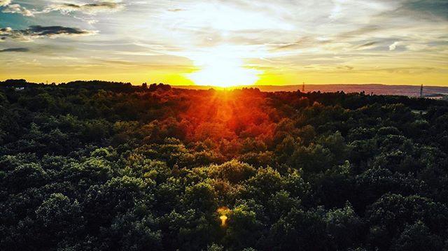 Tonight's sunset over the treetops taken on my Mavic Air.  #dji #mavic #air #yorkshirephotographer #huddersfield #sunset #sunsetphotography #aerialphotography #upabove #treetops #trees #goldenhour #goldenlight