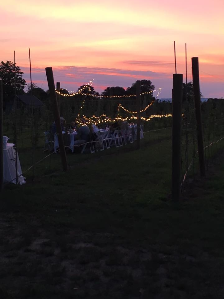 First Annual 'Chris's Kitchen Dinner in the Orchard', 2016