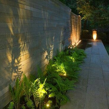 Summer landscape lighting trends efficient electric accent lighting creates these bold sillouhettes against walls aloadofball Images