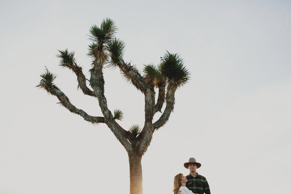 joshua_tree_engagement_013