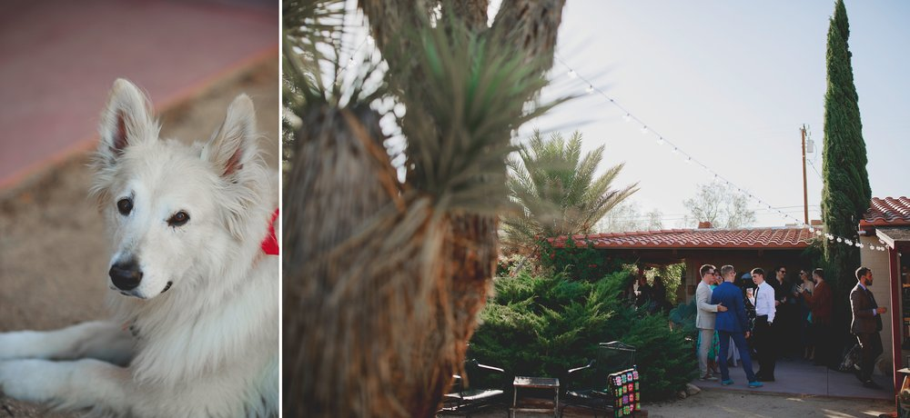 amanda_vanvels_joshua_tree_inn_wedding_062.jpg