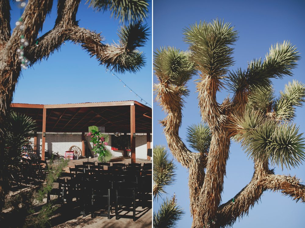 amanda_vanvels_joshua_tree_inn_wedding_067.jpg
