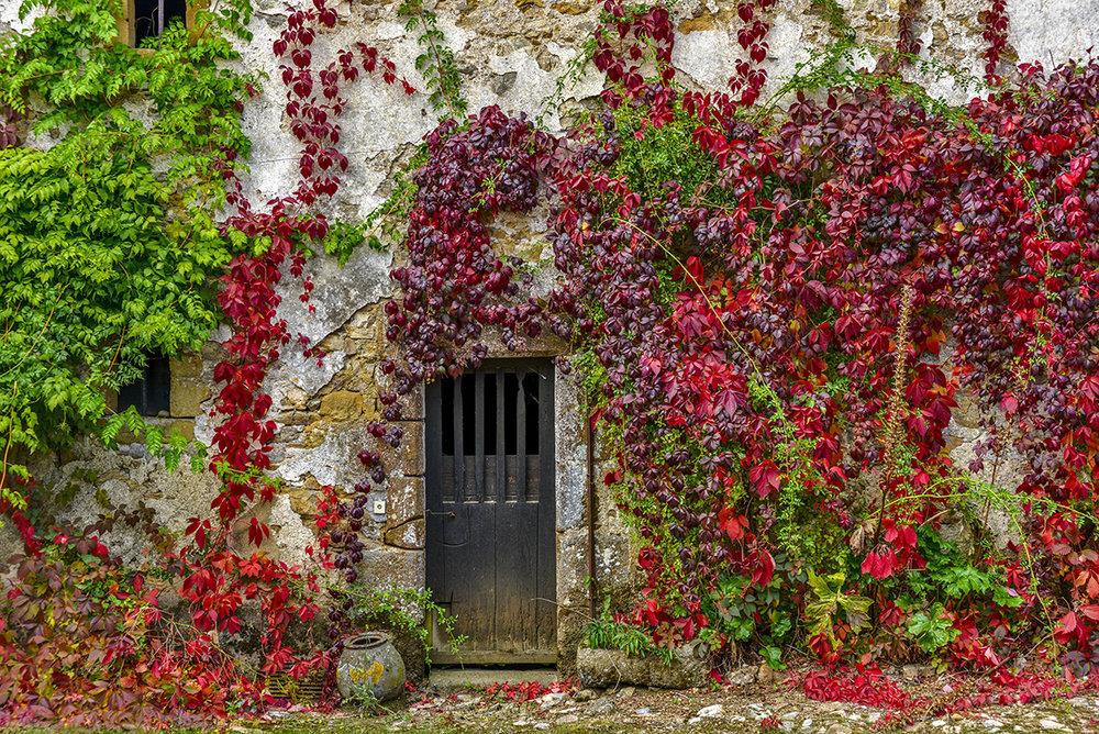 courtyard_0285.jpg