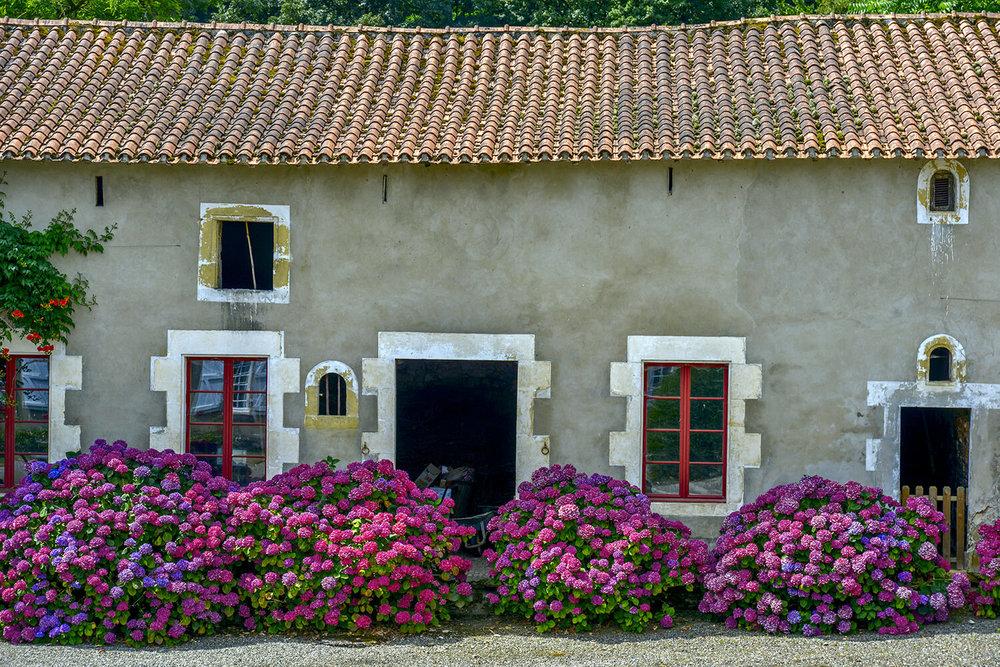 chateau1_0258.jpg