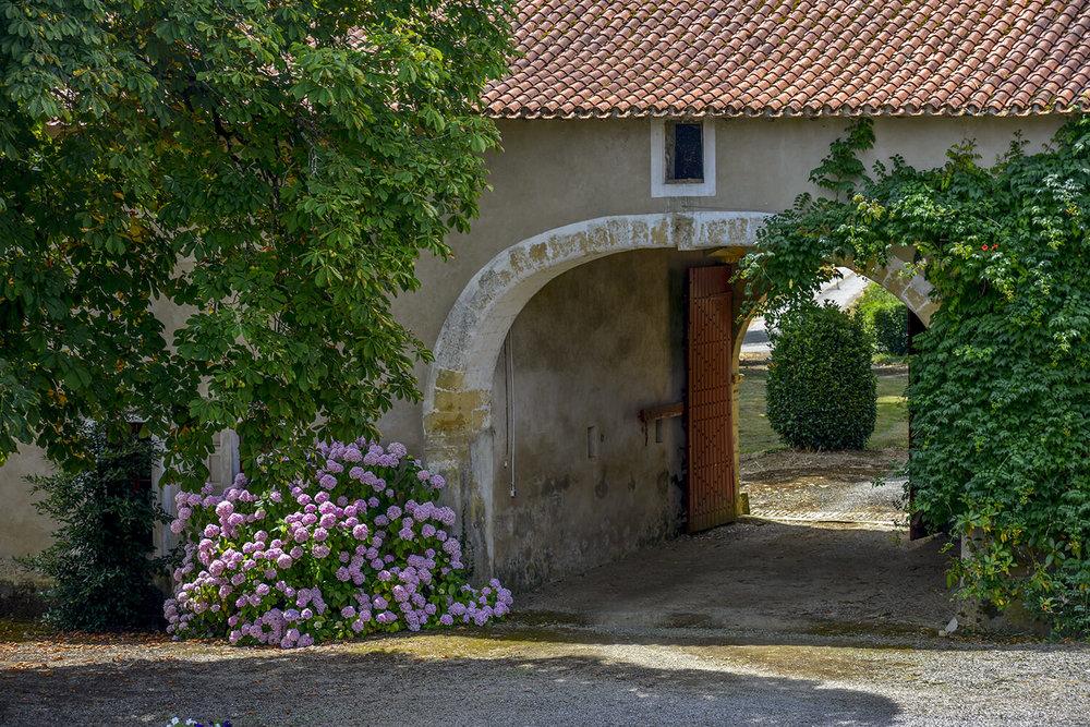 chateau1_0265.jpg