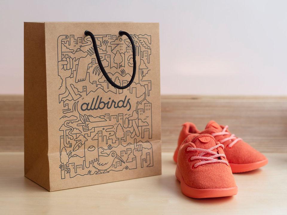 Allbirds' Retail Shopping Bag