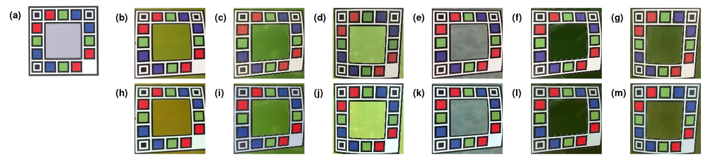 Figure 3 demonstrates the effect the normalization algorithm has on a selection of six images. The pixels from the coloured squares in the reference image (Figure 1a) are used to train a Gaussian process model for each colour channel within each image. Figures 1b-1g are the unnormalized images uploaded to the site after they have undergone image transformation to orient the anchor points. Figures 1h-1m are the corresponding normalized images after the Gaussian process based algorithm has been applied.