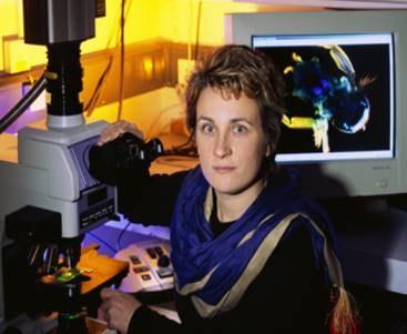 Dr Steffi Reichelt