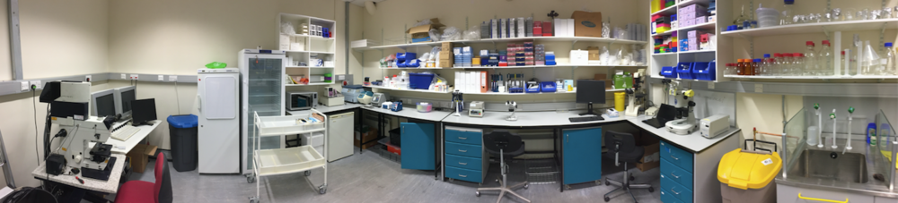 Figure 7. The biology lab of Biomakespace
