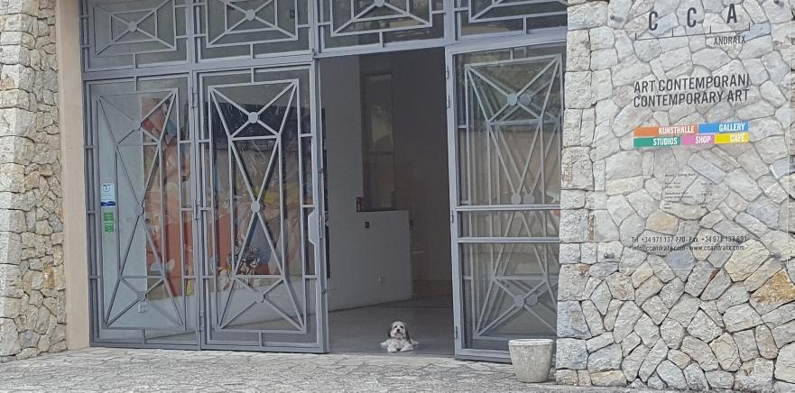 En mycket respektingivande dörrvakt i entrén 😉😍