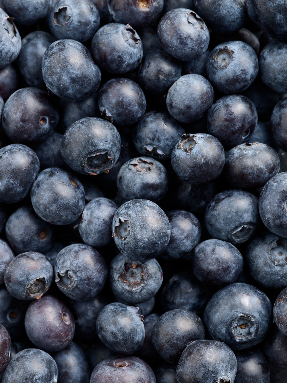 Blueberries Multi copy.jpg