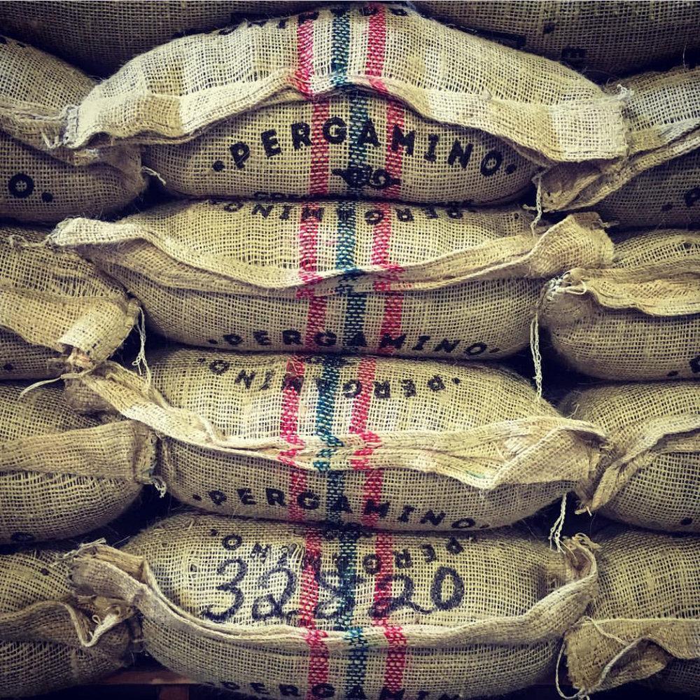 Bulk Coffee Supply