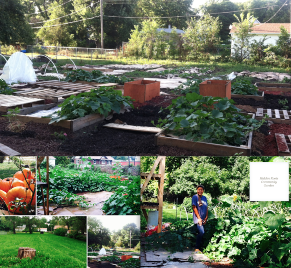 """We began constructing our allotment garden in 2015. It's a work in progress and we have big plans for the area. First of all, it's a children's allotment garden--meaning when we begin offering """"plots"""" for rental in 2018 those spots go to families with children-where the main focus revolves around children learning to garden with parental assistance. We believe this encourages young people to lead healthy lifestyles, learn about (and give back to) community while encouraging families to work and spend time together.   I am also an instructor at Metropolitan Community College (our close neighbors) and occasionally hold class/workshops in the garden.  MISSION: To encourage children to become good stewardship of nature and wildlife, while teaching them how to grow healthy, fresh food for the purpose of leading a sustain healthy existence throughout their lives and to embrace the spirit of community and giving back."""