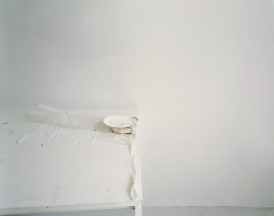 Untitled, #37, To Say It Isn't So series, 2006
