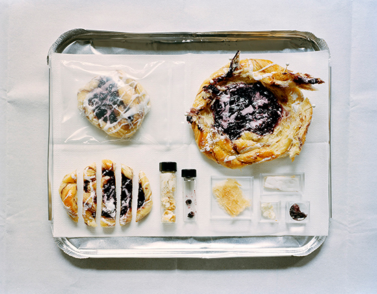 Kathryn Parker Almanas | Blueberry Danish, 2006