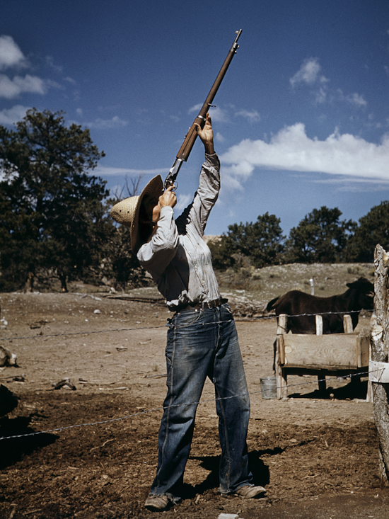 Nell Leathers, homesteader, shooting hawks which have been carrying away her chickens.