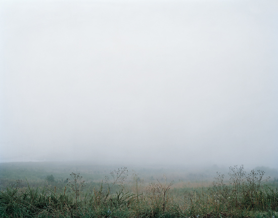 Into the Fog, 2010